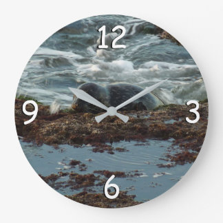 Sunset Lit Harbor Seal I at San Diego Large Clock