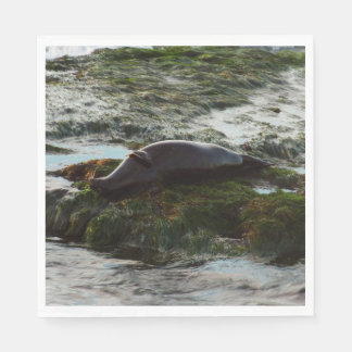 Sunset Lit Harbor Seal II at San Diego Disposable Napkin
