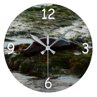 Sunset Lit Harbor Seal II at San Diego Large Clock
