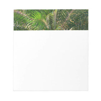 Sunset Lit Palm Fronds Notepad