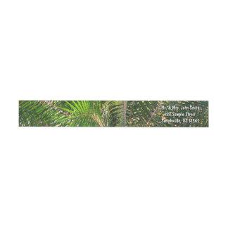 Sunset Lit Palm Fronds Wrap Around Label