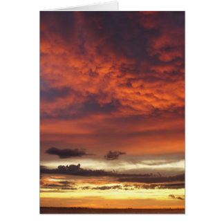 Sunset on Fort Myers Beach Cards