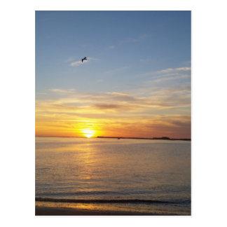 Sunset on Thanksgiving. Postcard