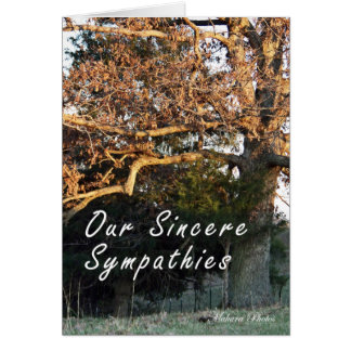 Sunset on the tree sympathy card