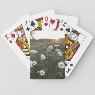 Sunset over Daisies Playing Cards