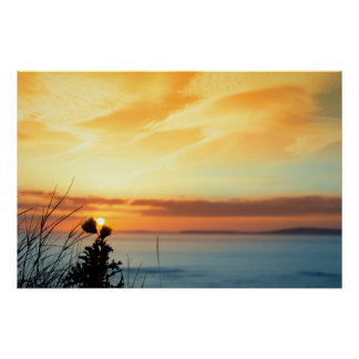 sunset over loop head with silhouetted wild thistl poster
