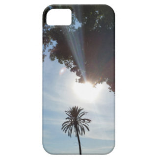 sunset over parkland iPhone 5 cases