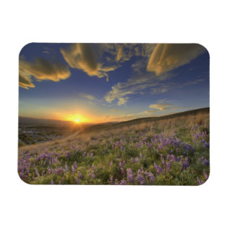 Sunset over the Bitterroot Mountains and vast Rectangular Photo Magnet