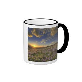 Sunset over the Bitterroot Mountains and vast Ringer Mug