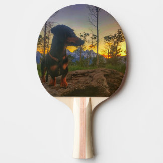 Sunset over the Tetons Ping Pong Paddle