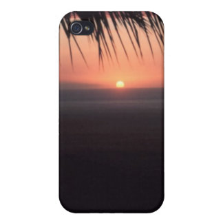 SUNSET PALM COVERS FOR iPhone 4