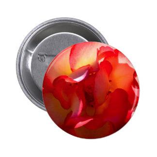 Sunset Rose Button