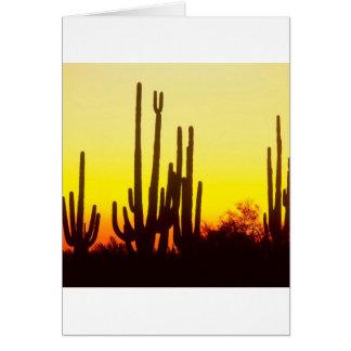 Sunset Saguaro Cactus Arizona Card