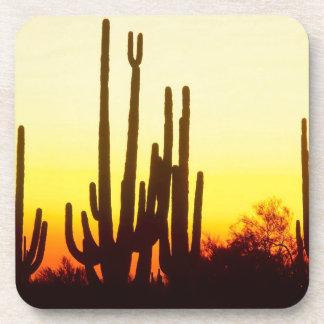 Sunset Saguaro Cactus Arizona Coasters