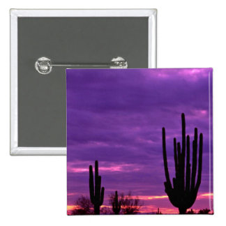 Sunset Scottsdale Arizona Pinback Button
