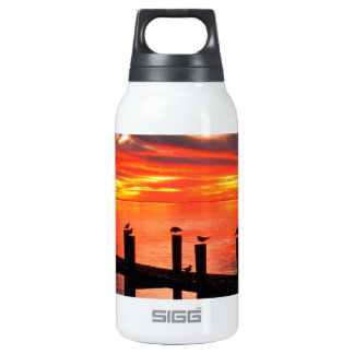 Sunset Seagulls At Fort Myers Florida Insulated Water Bottle