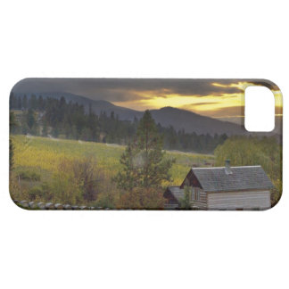 Sunset sky over vineyards and historic log cabin case for the iPhone 5