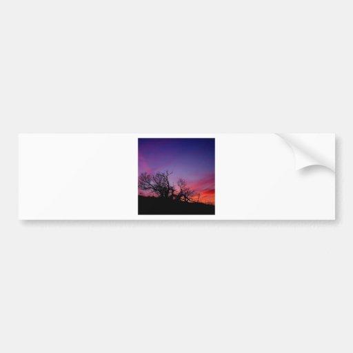 Sunset Tee Tree Bumper Stickers