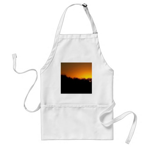 Sunset The Brilliant Sun Aprons