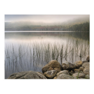 Sunset through fog over Upper Hadlock Pond Postcard