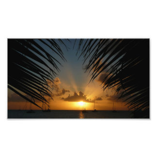 Sunset Through Palm Fronds Photo Print