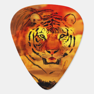 Sunset tiger plectrum