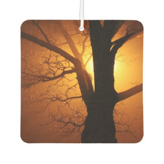 Sunset Tree Car Air Freshener