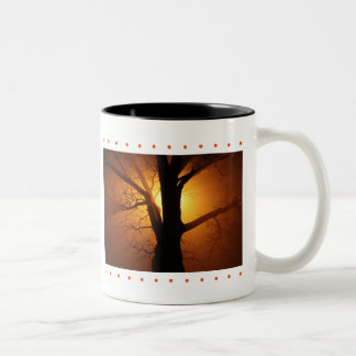 Sunset Tree Two-Tone Coffee Mug