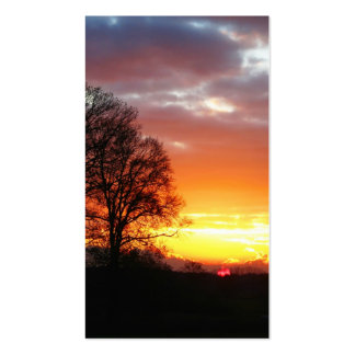 Sunset Trees in Nature Business Cards