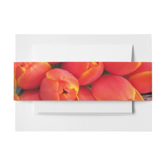 Sunset Tulips Invitation Belly Band