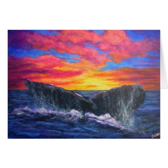 sunset  whaleflluke card