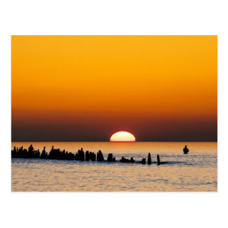 Sunset with angler on shore of the Baltic Sea Postcard