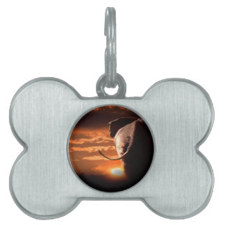 Sunset with Elephant Pet ID Tag