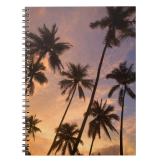 Sunset with Palm Trees, Moorea, French Polynesia 2 Note Book