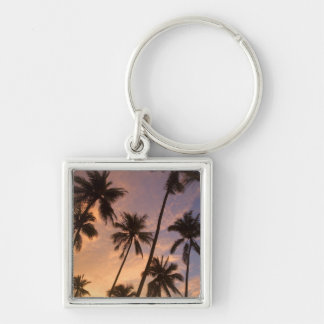 Sunset with Palm Trees, Moorea, French Polynesia 2 Silver-Colored Square Key Ring