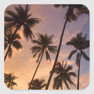 Sunset with Palm Trees, Moorea, French Polynesia 2 Square Sticker