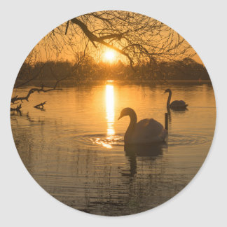 Sunset with Swan Classic Round Sticker