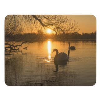 Sunset with Swan Door Sign