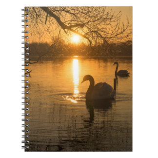 Sunset with Swan Notebook