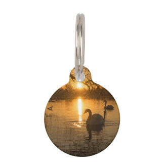 Sunset with Swan Pet Tag
