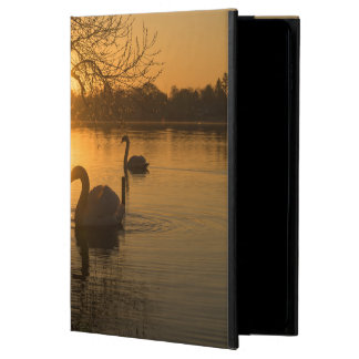 Sunset with Swan Powis iPad Air 2 Case