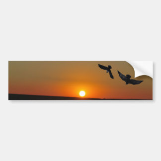 Sunset with the raven and the eagle bumper sticker