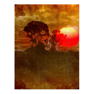 Sunset With Tree Post Cards