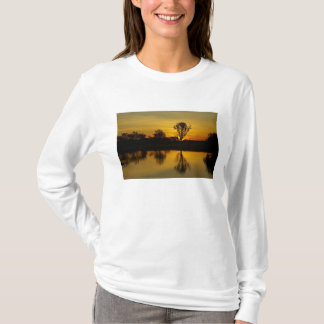 Sunset, Yellow Water Billabong T-Shirt