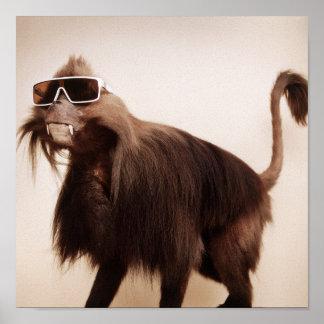 sunshine monkey poster