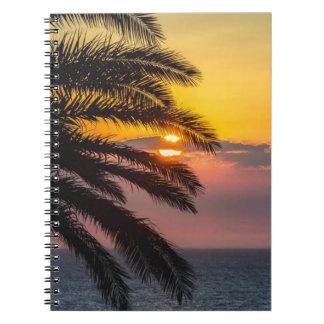 Sunshine Palm Three Nature Photo Notebook