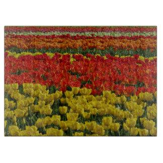 Sunshine Rainbow Tulips Cutting Board
