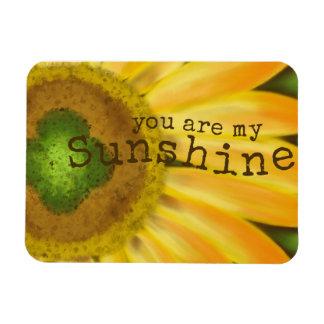 Sunshine Rectangular Photo Magnet