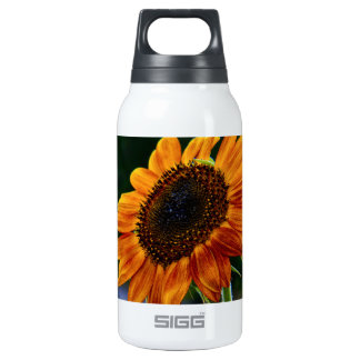 Sunshine Sunflower 0.3 Litre Insulated SIGG Thermos Water Bottle