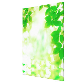 Sunshine through leaves, close-up canvas print